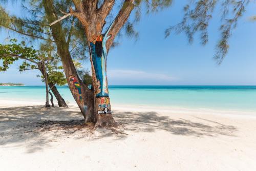 876 Beach Club,