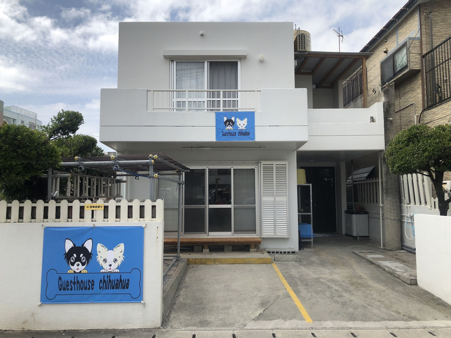 GuestHouse Chihuahua - Hostel, Chatan