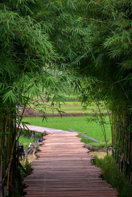 Chick Resort @ Khao Kho, Khao Kho