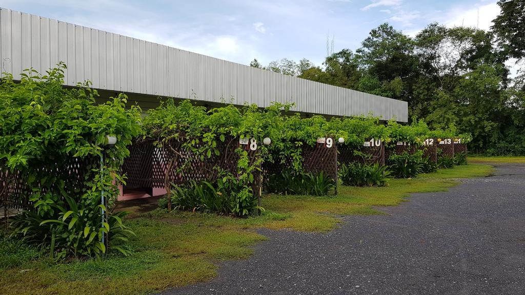 Rainbow Resort, Phen