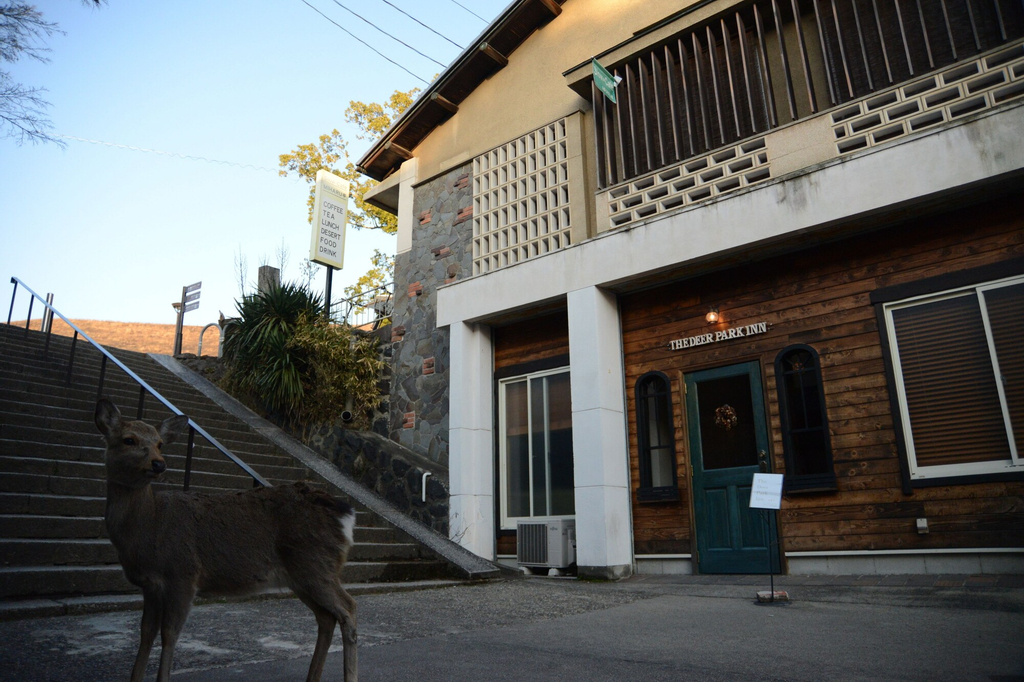 The Deer Park Inn, Nara