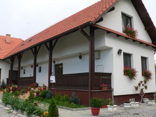 Casa Cu Pridvor, Sanmartin