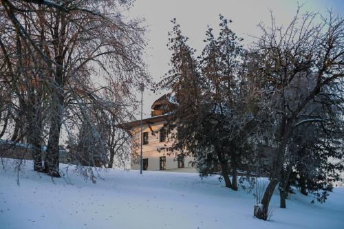 Mazmezotnes muiza, Bauska