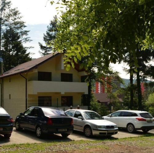 Casa Nistor, Calimanesti