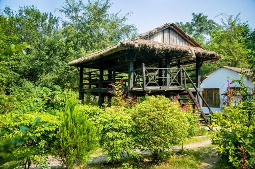 Island Jungle Resort, Lumbini