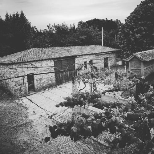 Quinta Calheiros - Rural Place, Vila Verde