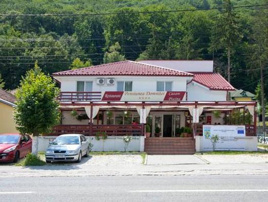 Hotel Domnitei, Calimanesti