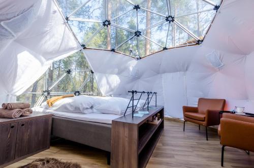 Aurora Canvas Dome, Alta