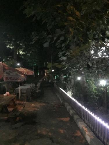Saray otel restaurant, Şavşat