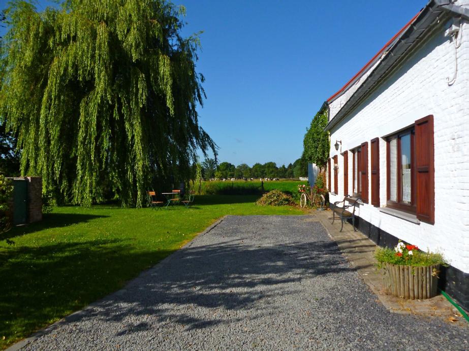Le ruiclot, Hainaut