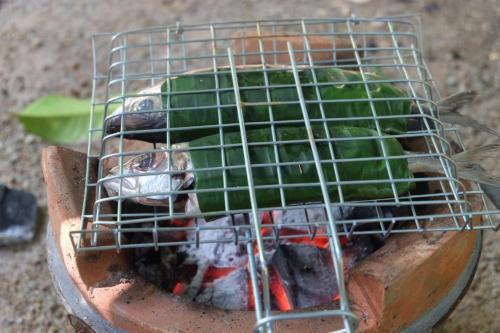 Kong Si Por Farm Stay, Thai Muang