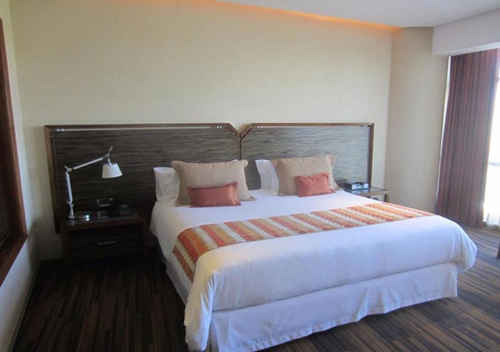 Hotel Dreams Araucania, Cautín