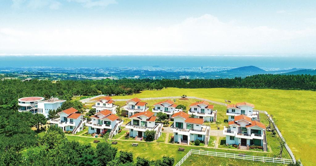 Amber Resort Jeju, Jeju