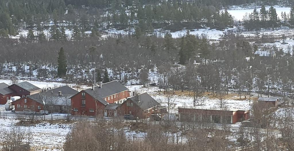 Vats Fjellstue, Ål