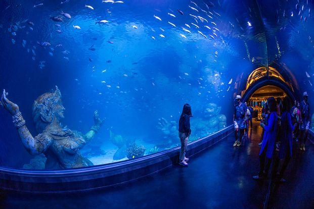 [SALE] Aquaria Phuket Ticket