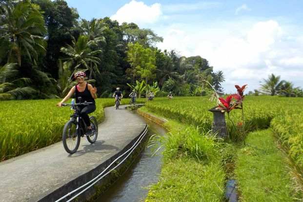 Ubud to Tegallalang Rice Terraces by eBikes Bali