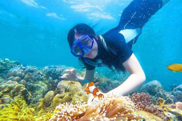 Gili Ketapang Private Snorkeling Tour from Surabaya