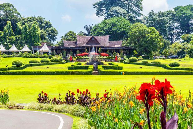Bogor Botanical Garden, De Voyage Bogor, And Curug Nangka Day Tour