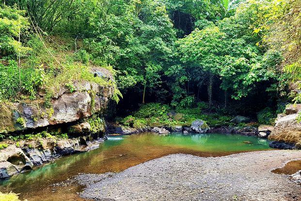Beji Guwang Hidden Canyon Trekking Experience in Bali