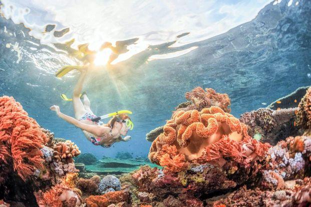 Snorkeling at Padangbai Area