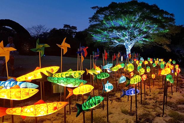 Jeju Light Garden and Photo Studio