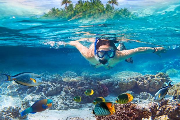 Snorkeling Padang Bai by Bali Aqua Dive Center