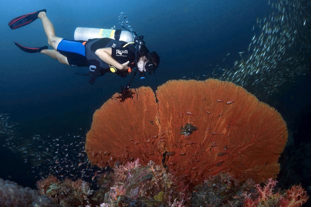 NITROX. Durasi 1 Hari (min 3 pax) by Bali Aqua Dive Center