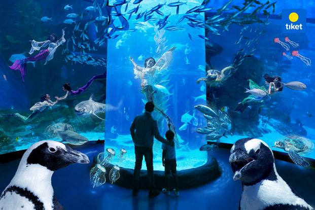 Jakarta Aquarium and Safari
