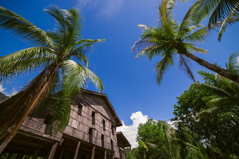 Orang Utan Rehabilitation Centre and Annah Rais Longhouse Tour