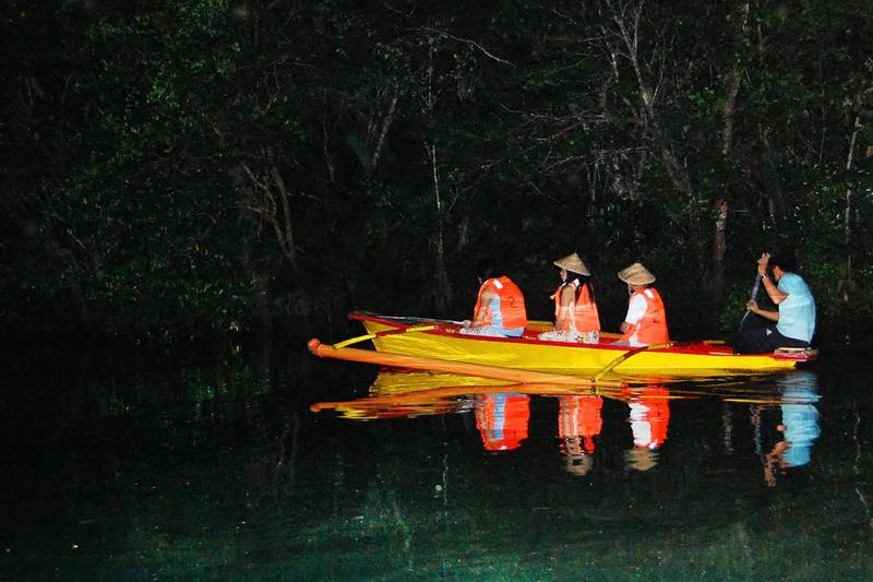 Tur Setengah Hari Pertunjukkan Kunang-Kunang di Sungai Iwahig dari Puerto Princesa dengan Makan Malam di Restoran Ka Lui