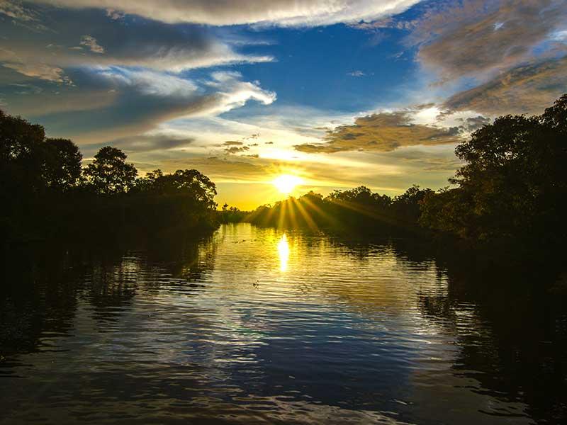 Klias Wildlife River Cruise