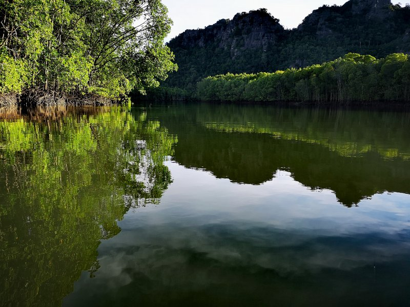 Private Mangrove Boat Tour With Transfer and Meal in Langkawi