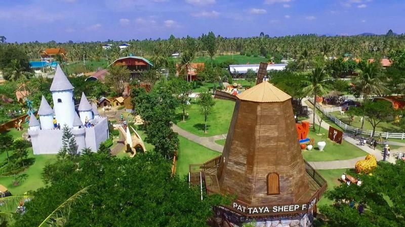 Pattaya Sheep Farm Ticket