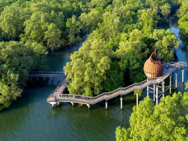 Explore the Nature at Sungei Buloh Wetland, Mount Faber and Botanic Garden