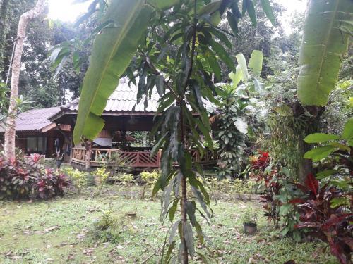 Koh Kood Little Hut, K. Ko Kut