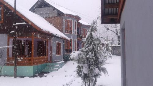 Paradise Guest House, Anantnag