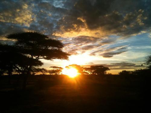 Mapito Tented Camp Serengeti, Serengeti