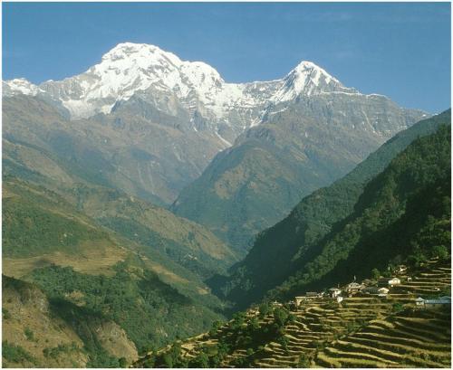 Lamachaur Cottages, Gandaki