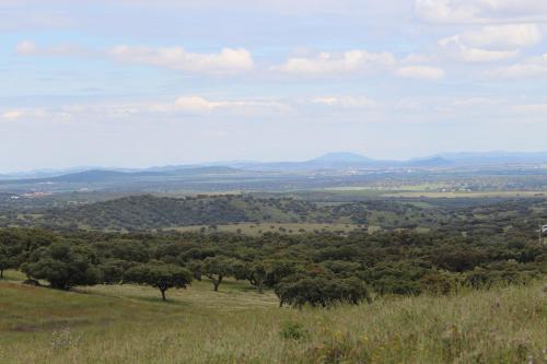 Monte dos Cordeiros, Vila Viçosa