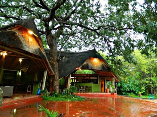 Unlimited Luxury Lodge in Kasane, Chobe