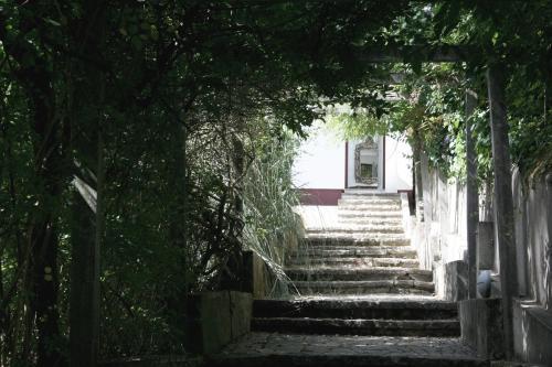Casa da Floresta - Senhora da Paz, Sintra