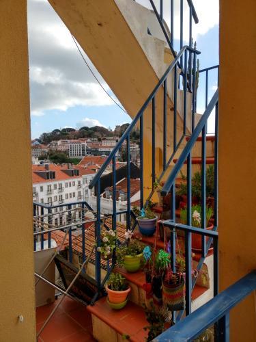Sofia's House, Lisboa