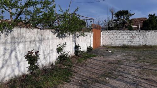 Antonio house guest, Krujës