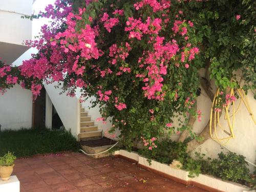 Maison S+2 climatise a yassmine hammamet !, Hammamet