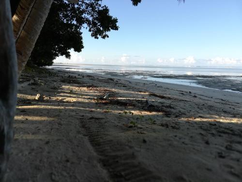 Barefoot Beach Rentals,