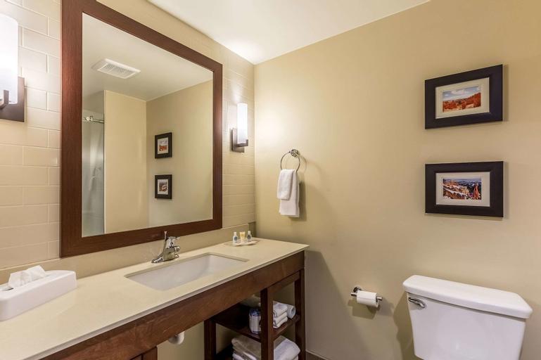 Comfort Suites St George - University Area, Washington