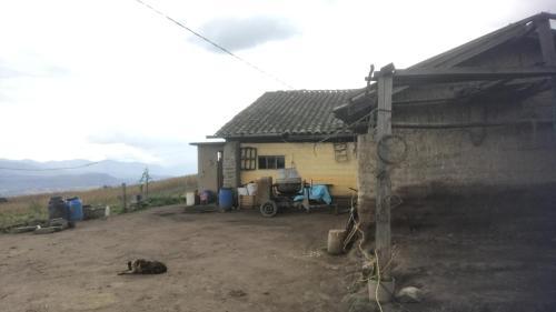 Chaski internacional, Otavalo