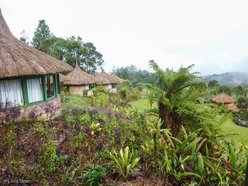 New Guinea Natural Tours, National Capital District