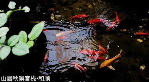 花筑 腾冲和顺古镇山居秋暝客栈, Baoshan