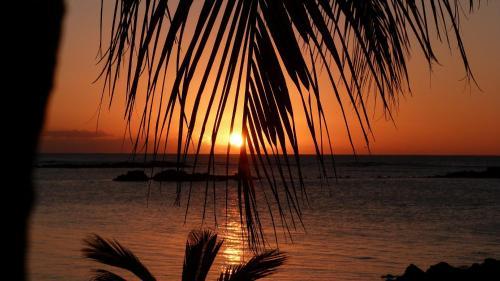 Palm Biche Residence,